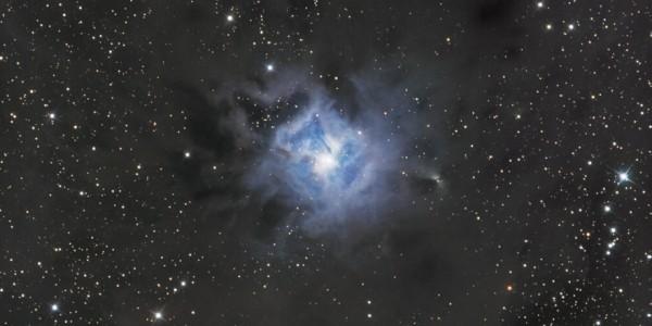 NGC 7023, Iris Nebula