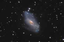NGC2146 by Mike van den Berg & Mathijn Ippel