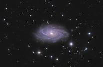 NGC2336 by Mike van den Berg & Mathijn Ippel