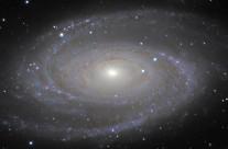 M81 (NGC3031) by Mike van den Berg & Mathijn Ippel