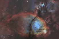 IC1795 Fishhead Nebula by Bill Snyder (APOD Dec 24, 2014)