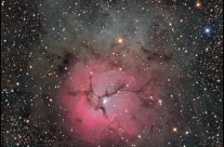Trifid Nebula (M20) by Damian Peach