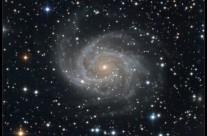NGC 2997 by Damian Peach