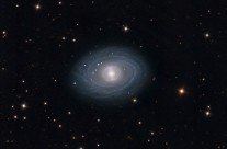 NGC 1398 by Damian Peach