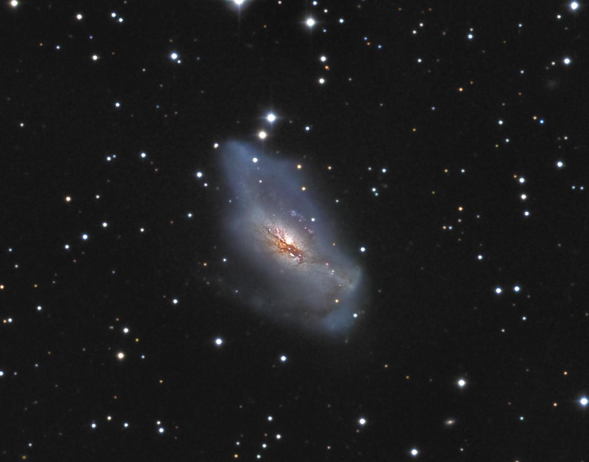 NGC2146 mike van den berg