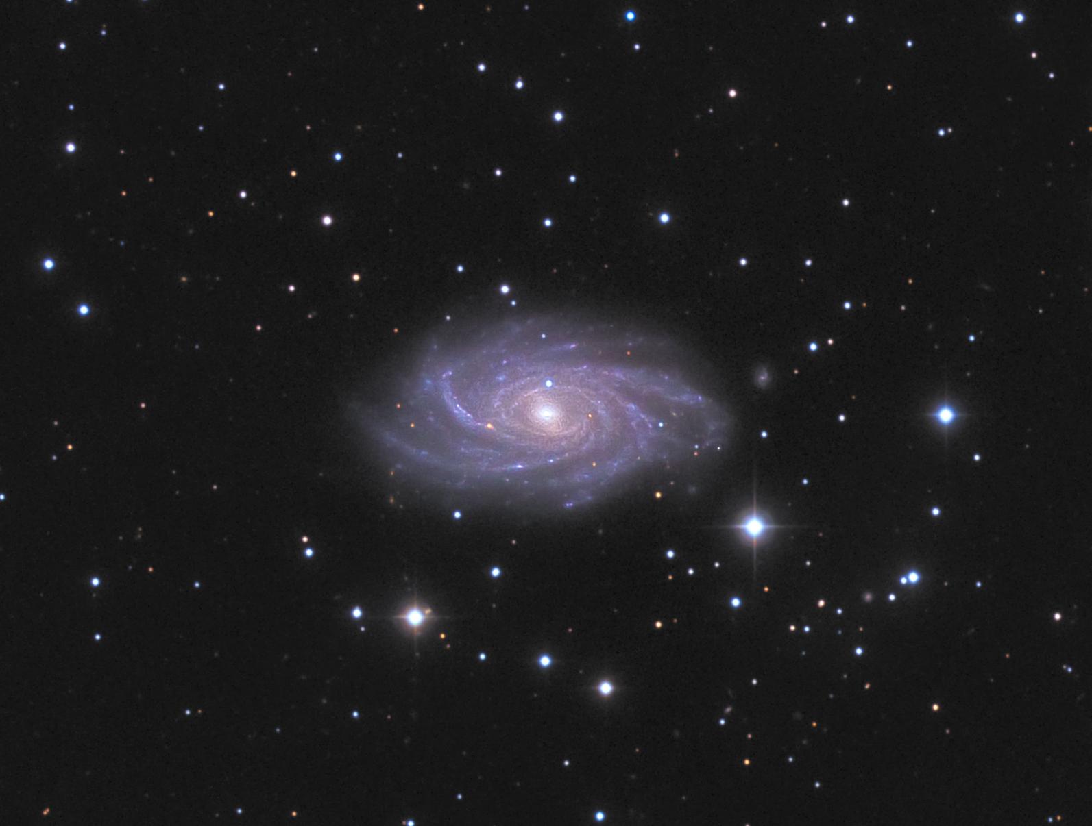 NGC2336 mike van den berg