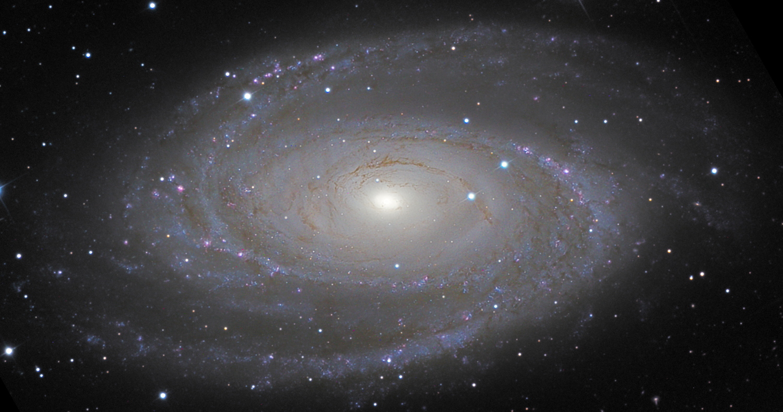 NGC3031 mike van den berg